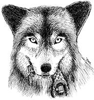 wolf-and-unlucky-leprechaun