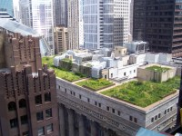 Chicagos most famous rooftop garden sits atop City Hall ...
