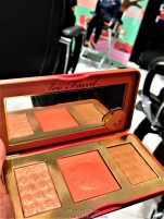 The Highlighter palette (I was drooling over it)
