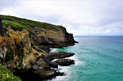 The part of beach where albatrosses were flying, we spotted some lazy fur seals at the rocks too.