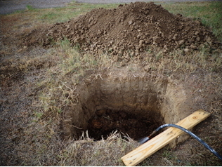 A hole that has been dug for one of the fruit trees