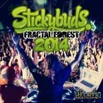 Stickybuds – Fractal Forest Mix – Shambhala 2014