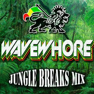Wavewhore_JungleBreaksMix_V_Sm_zps1xdrvaas