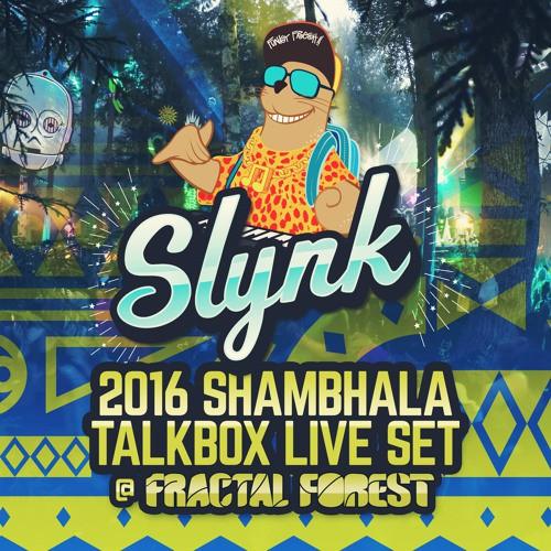 slynk-live-shambhala-fractal-forest-2016