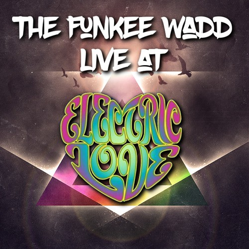 the-funkee-wadd-live-electric-love-music-festival-2016