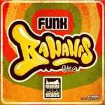 Mr Rich – Funk Bananas Volume 2 Mini Mix
