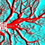 Saku – Echoes (Bass & Breaks Mix)
