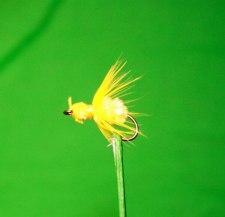 Fat Gnat Yellow