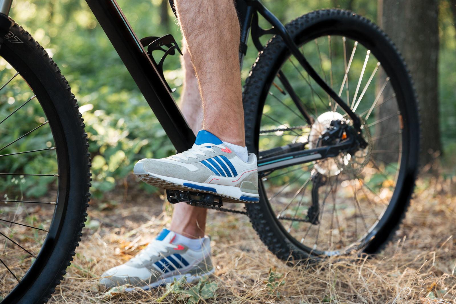 Somerset Bike Hire