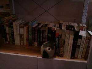 Another view of my bookshelves, showing off my owl bookends