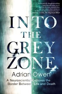 Cover of Into the Grey Zone by Adrian Owen