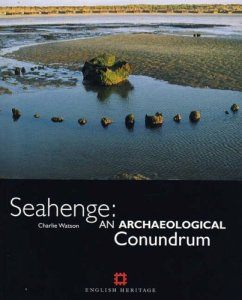 Cover of Seahenge: An Archaeological Conundrum by Charlie Watson