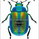 Cover of Extraordinary Insects by Anne Sverdrup-Thygeson