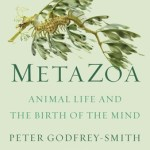 Cover of MetaZoa by Peter Godfrey-Smith