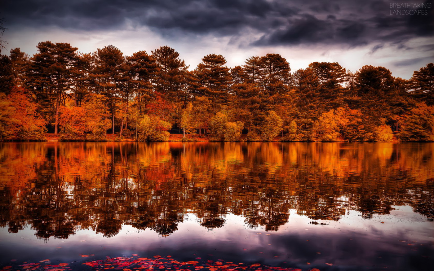 Breathtaking Fall Landscapes