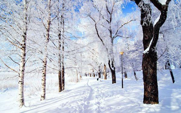 snow breathtaking landscapes