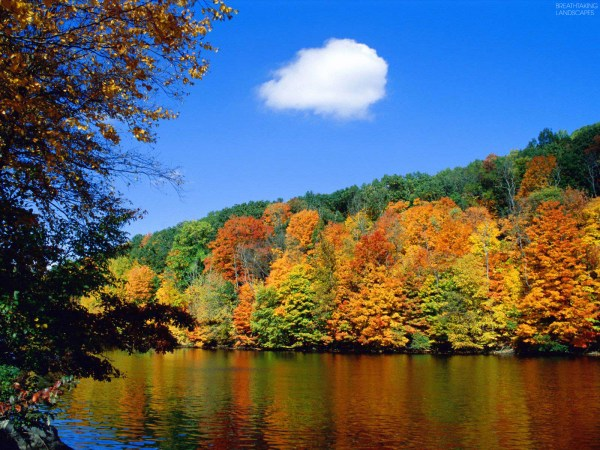 Beautiful Fall Nature Landscape