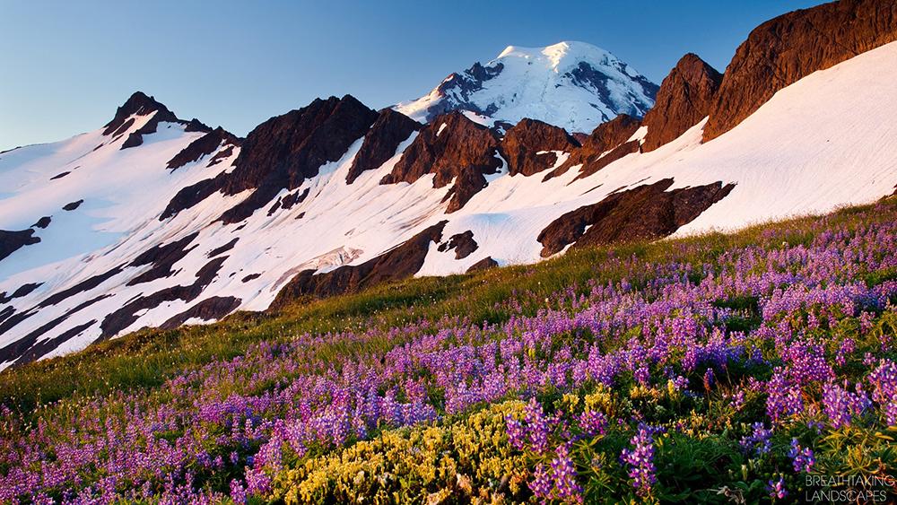 winter breathtaking landscapes
