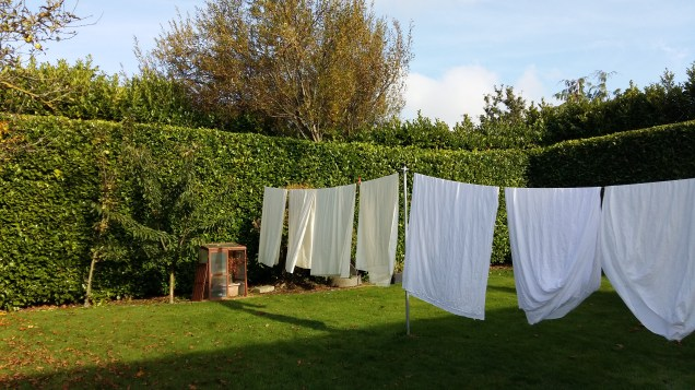 Wash day in Kinnity