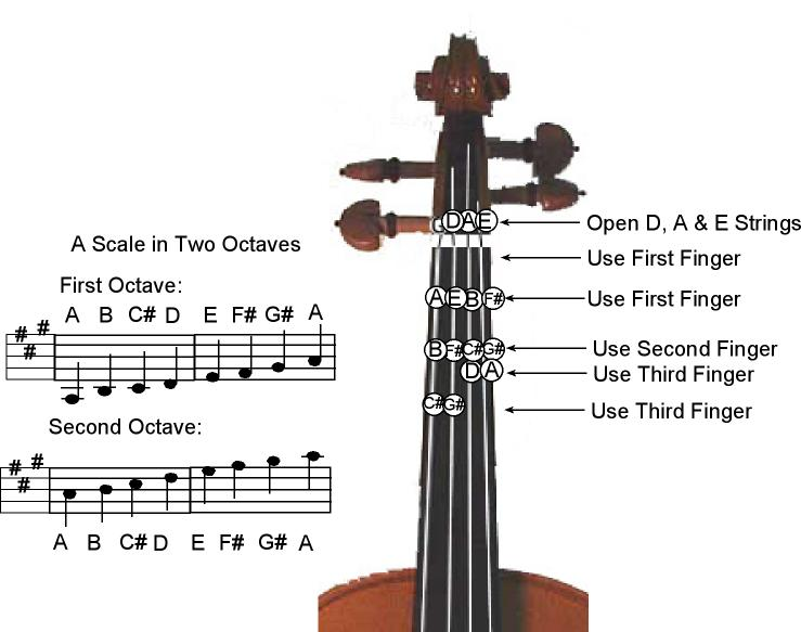 A Major Scale -Two Octave