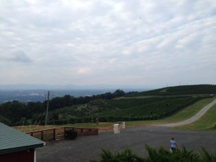 Overlooking the vineyard and mountains in Charlottesville.