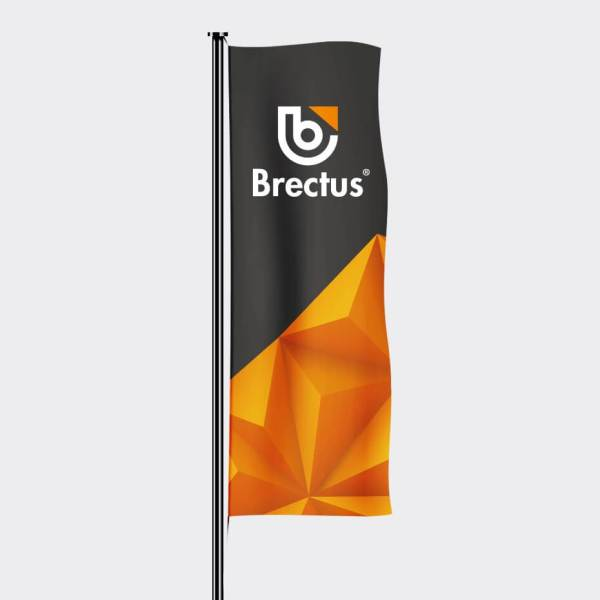 Flags with logo
