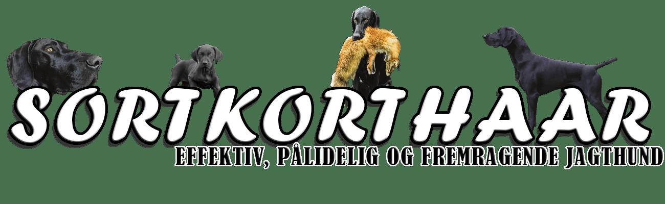 Sortkorthaar.dk