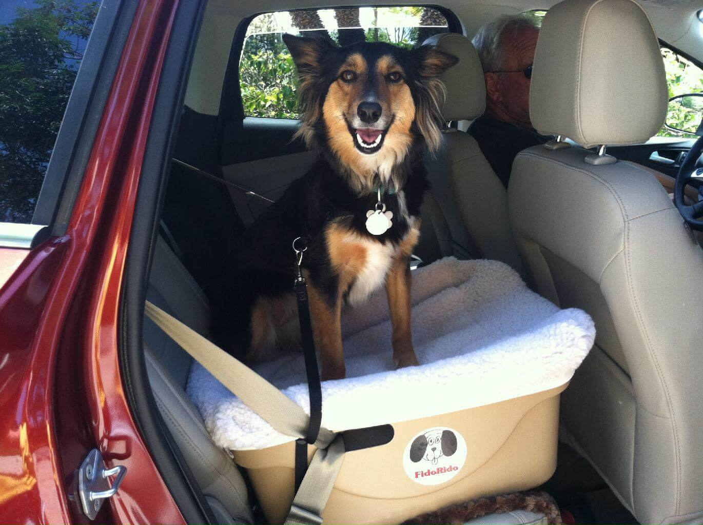 6 Best Dog Car Seats In 2018 Buying Guide For Dog Booster Seats
