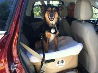 FidoRido Dog Car Seat