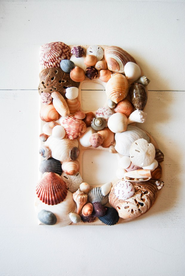 DIY Friday- SeaShell Letter | Breezing Through 6