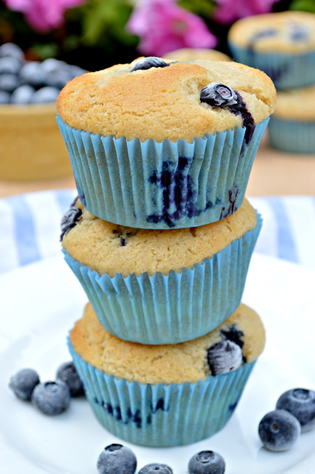 Try these Gluten Free Blueberry Cheesecake Muffins for a sweet morning treat or midday snack. Made with coconut flour for extra sweetness and a super tender crumb.