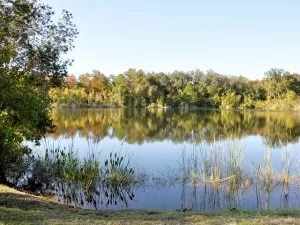 Thousand Oaks Lake