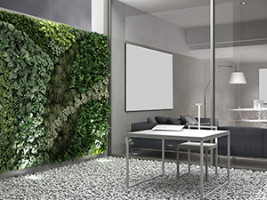 The new Biophilic Office
