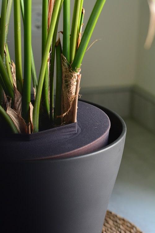 blumen und zimmerpflanzen kindersicher machen breifreibaby. Black Bedroom Furniture Sets. Home Design Ideas