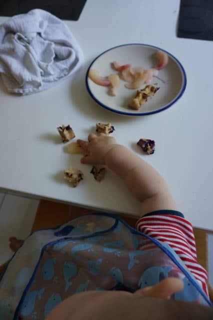 baby-led weaning - wie oft am Tag Essen anbieten?