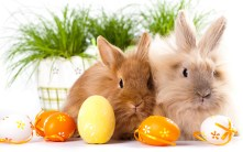 Kaninchen mit Ostereiern