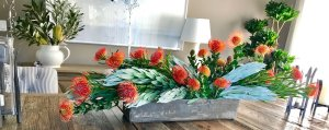 Brenda Berkley Designs - flowers, plants