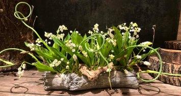 bbd-spring-floral