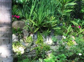 garden-curation-13