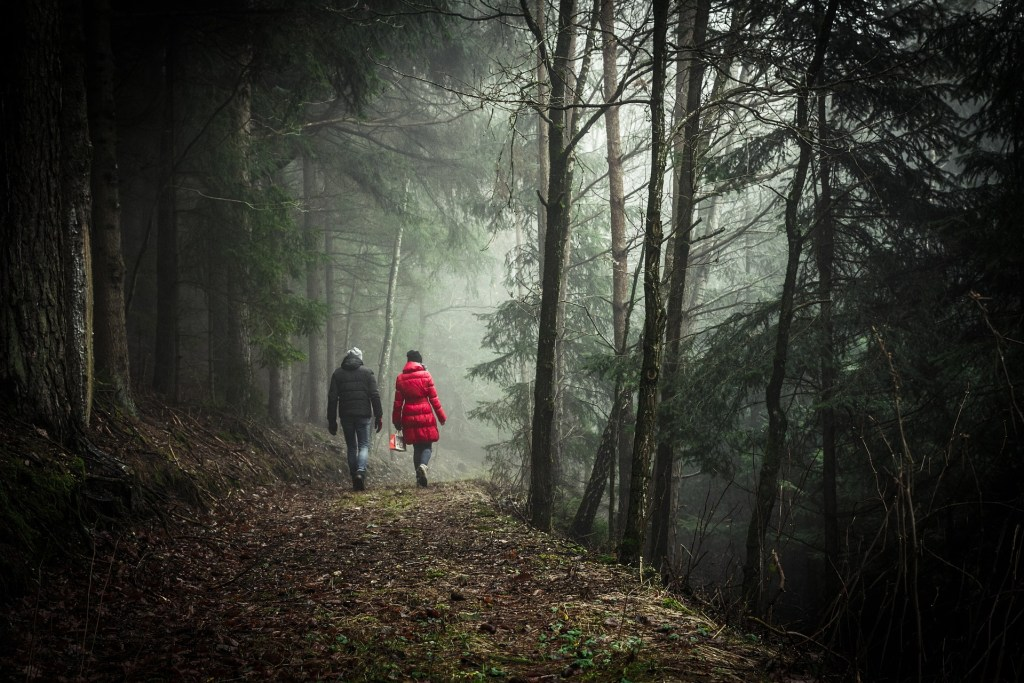 couple walking in woods
