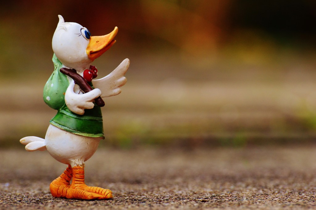 duck on a journey