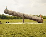 giant log seesaw