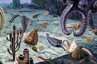 D.W. Miller's depiction of Cambrian animals in the Burgess Shale. (Smithsonian)