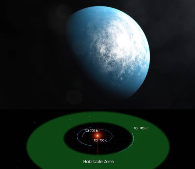 Artist's impression of TOI 700 d, diagram of TOI 700 planetary system.