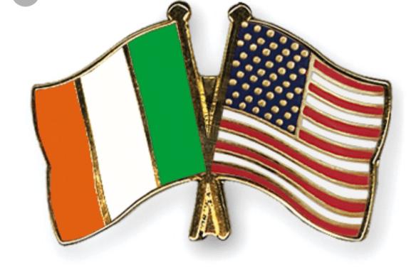 US Irish Flag