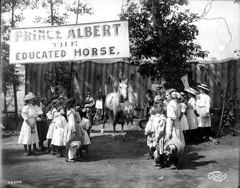 Prince Albert the Educated Horse with school children. Pay Streak Alaska Yukon Pacific Exposition: Seattle 1909