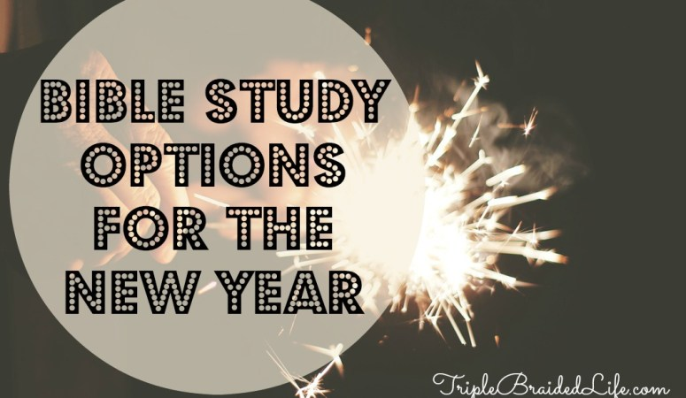 Bible Study Options for the New Year