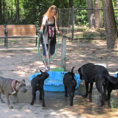 Kasmiersky Dog Park