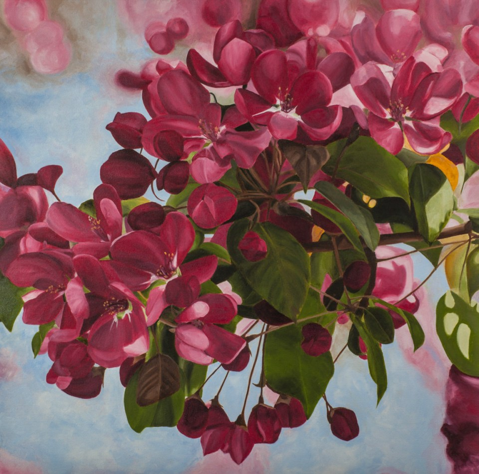 """""""Blooming"""" Brenda Stonehouse 24"""" x 24"""" oil on canvas. Available for purchase."""