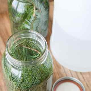 Evergreen Scented Vinegar for Cleaning
